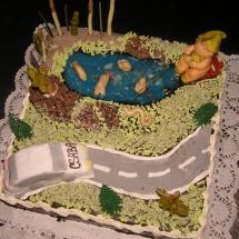Torta Csaba